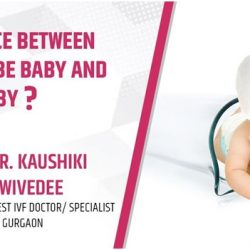 Difference between a test tube baby and an IVF baby?